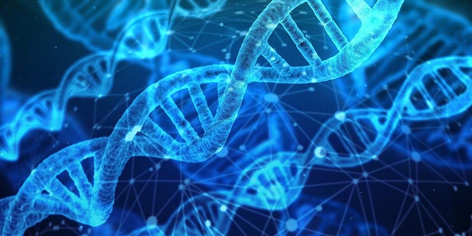 Test ADN famille